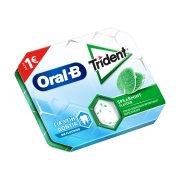 TRIDENT Oral-B Τσίχλες Δυόσμος 17gr