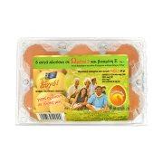 Αυγά ΤΣΑΟΥΣΗ Με Ω3 Medium 6τεμ 53-63gr