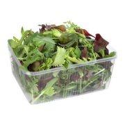 Σαλάτα Baby Φύλλα 100gr